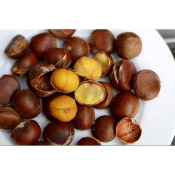 Dân tình sôi sục với việc ăn hạt dẻ có béo không? Đi tim giải đáp chính xác