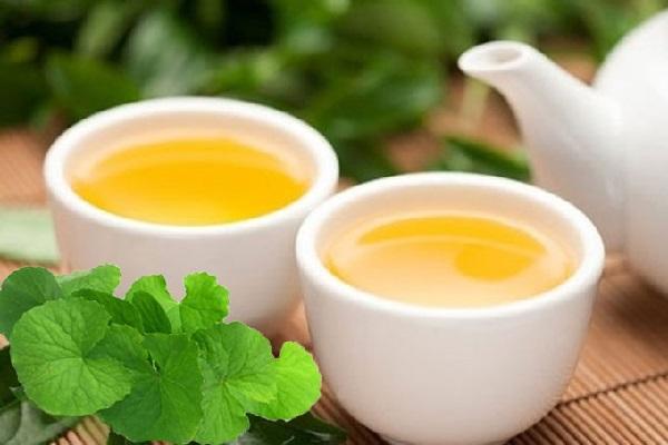 trà rau má, uống trà rau má giảm cân không